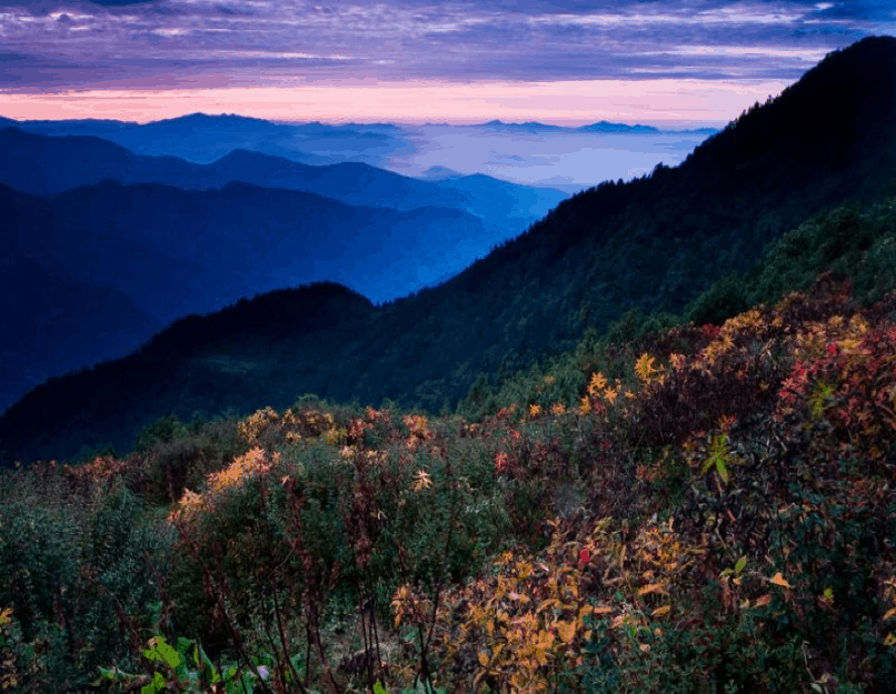 Appalachian Mountains – N.C., U.S.A.