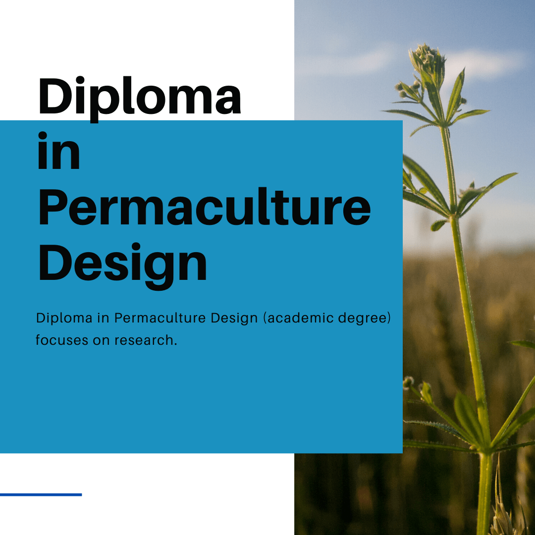Diploma in Permaculture Design
