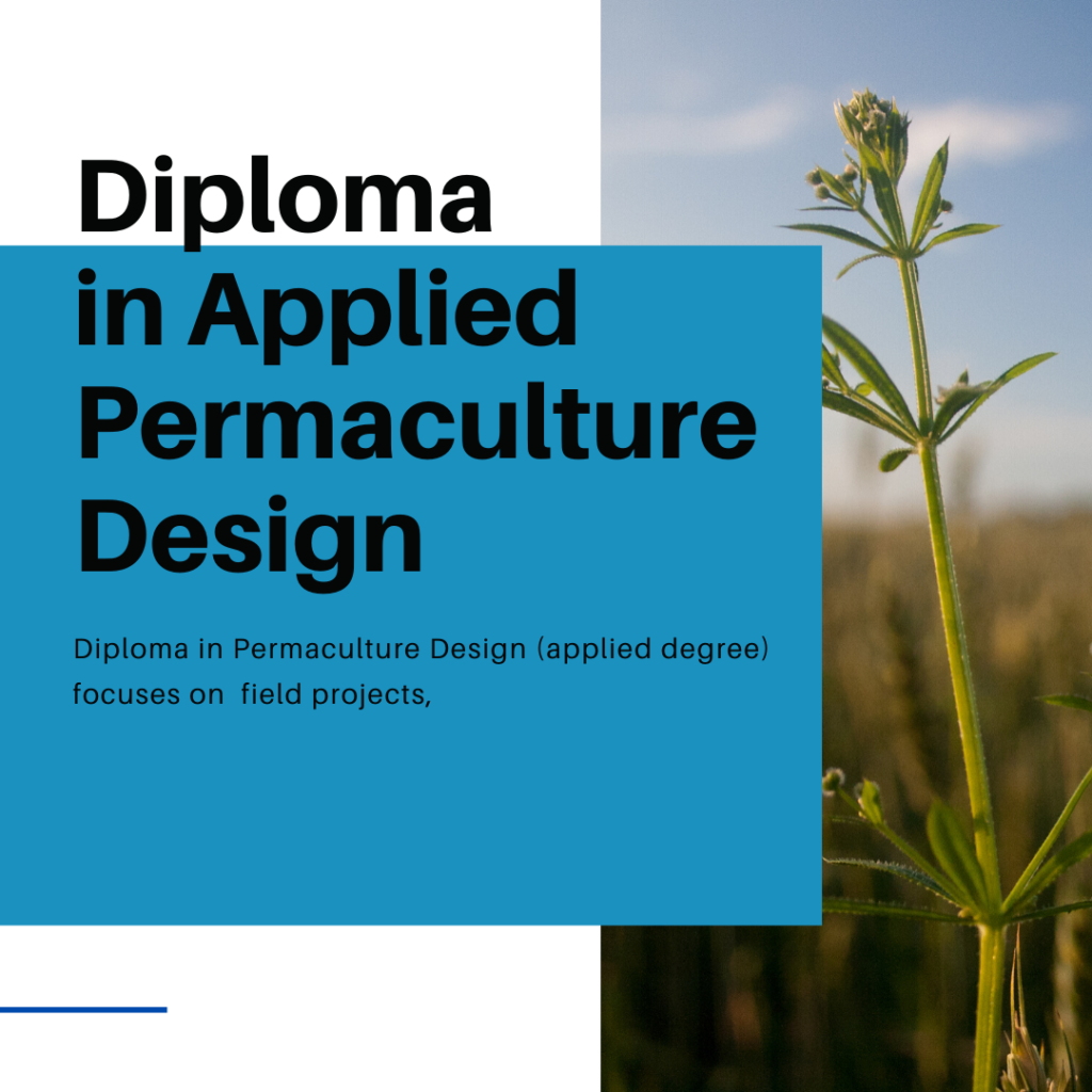 Diploma in Applied Permaculture Design