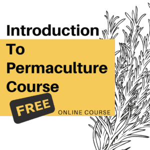 Intro to Permaculture Design